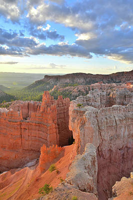 Photograph - Looking Down On Navajo Loop Trail by Ray Mathis