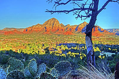 Photograph - Looking Down On Sedona From Airport Mesa by Toby McGuire