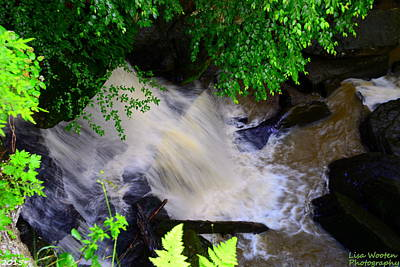 Photograph - Looking Down The Falls by Lisa Wooten