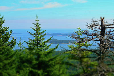 Photograph - Looking East From Beech Mountain - Acadia No. 95 by Sandy Taylor