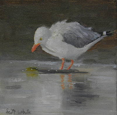 Painting - Looking For Scraps by Scott W White