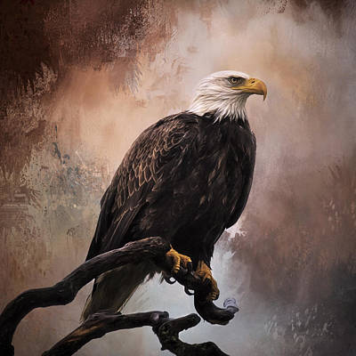 Jordan Painting - Looking Forward - Eagle Art by Jordan Blackstone