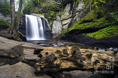 Photograph - Looking Glass Falls 2 - D009864 by Daniel Dempster