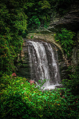 Photograph - Looking Glass Falls In Pisgah by Cathy Harper