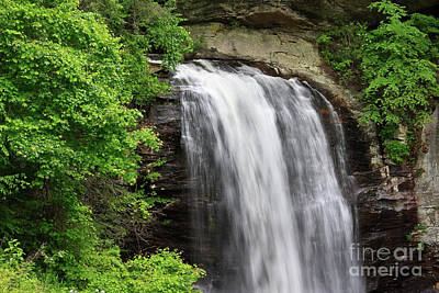 Photograph - Looking Glass Falls In The Summer With Green Leaves by Jill Lang