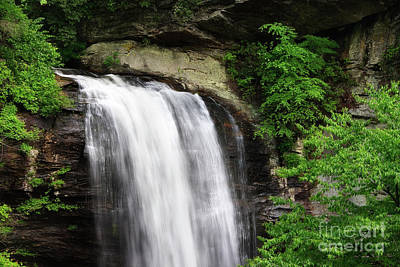 Photograph - Looking Glass Falls In The Summertime by Jill Lang