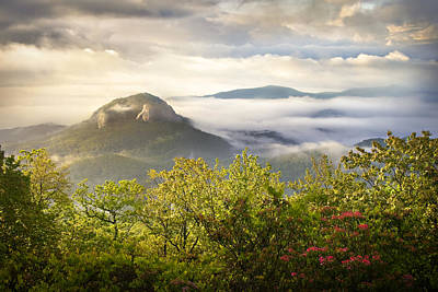 Mountain Laurel Photograph - Looking Glass Sunrise - Blue Ridge Parkway Landscape by Dave Allen