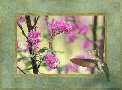Photograph - Looking Into Spring by Angie Vogel