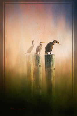 Cormorant Mixed Media - Looking Into The Mist by Marvin Spates