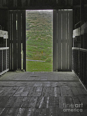 Photograph - Looking Out by Joyce Creswell