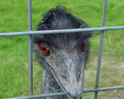 Emu Digital Art - Looking Out by Leah Mealing