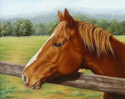 Painting - Looking Out by Margaret Stockdale