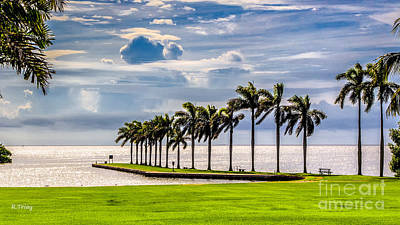 Photograph - Looking Out The Deering Estate by Rene Triay Photography