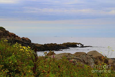 Photograph - Looking Out To Boone Light by Lennie Malvone