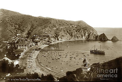Photograph -  Looking Over Holly Hill House  Avalon Bay, On Catalina Island C 1895 by California Views Archives Mr Pat Hathaway Archives