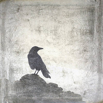 Corvid Photograph - Looking Seaward by Carol Leigh