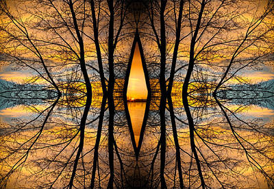 Looking Through The Trees Abstract Fine Art Art Print by James BO  Insogna