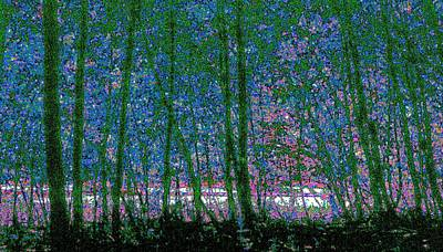 Art Print featuring the photograph Looking Through The Trees by Lyle Crump