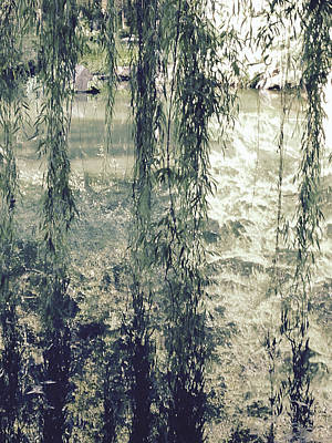 Photograph - Looking Through The Willow Branches by Linda Geiger