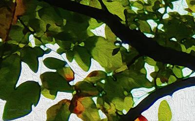 Photograph - Looking Thru The Leaves Seven by Robert J Sadler
