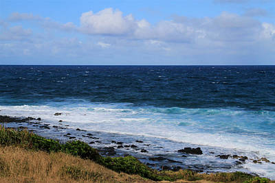 Photograph - Looking To The Sea by Bonnie Follett