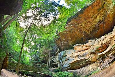 Photograph - Looking Up At Old Man's Cave by Lisa Wooten