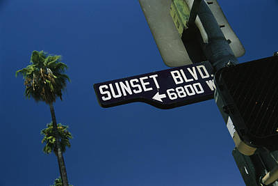 Looking Up At Sunset Boulevard Sign Art Print