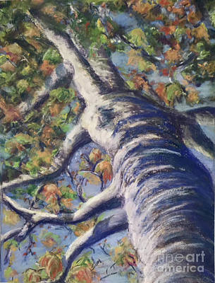 Painting - Looking Up - Fall by Susan Sarabasha