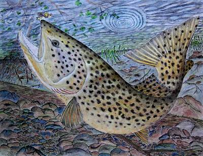 Trout Stream Drawing - Looking Up by Jason Blackwell