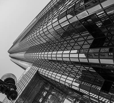Photograph - Looking Up by Jim Bosch