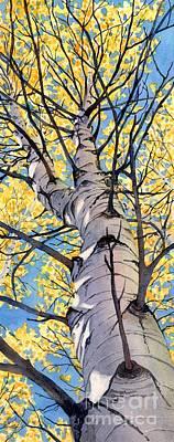 Looking Up Art Print by Lorraine Watry