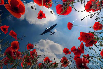 Remembrance Digital Art - Looking Upon The Fallen by J Biggadike