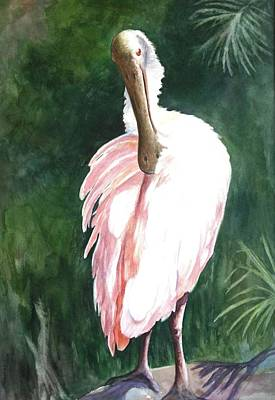 Look'n Back - Spoonbill Art Print