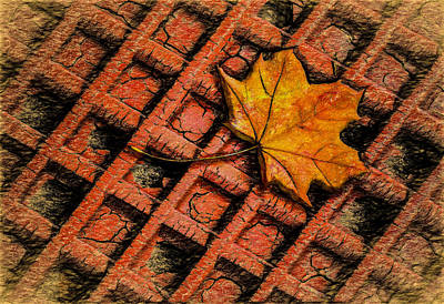 Burnt Umber Photograph - Looks Like Another Leaf by Paul Wear