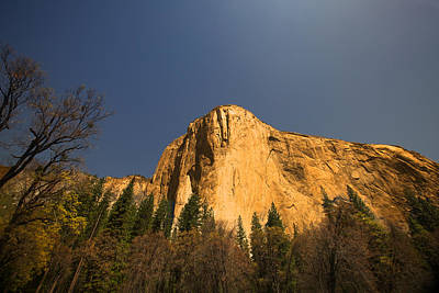 Photograph - Looming El Capitan  by Kim Wilson