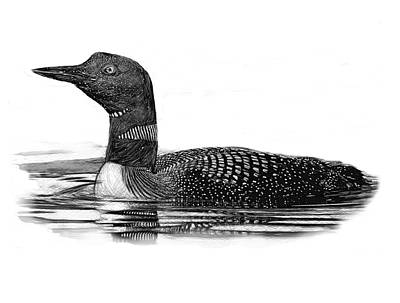 Loon Digital Art - Loon On Lake B And W by Yuichi Tanabe