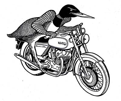 Loon Drawing - Loonie Rider On Norton by John Cullen