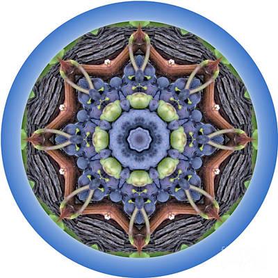 Loop Original by Kathy Strauss