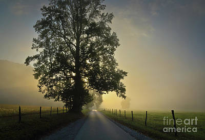Photograph - Loop Rd Sunrise by Douglas Stucky