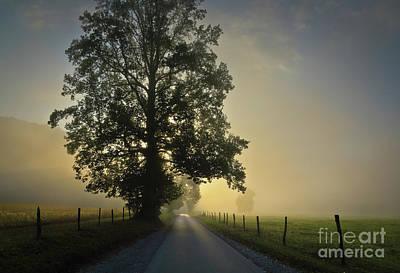 Photograph - Loop Rd Sunrise by Douglas Stucky
