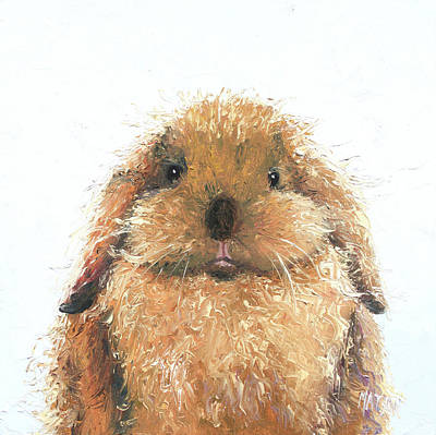 Painting - Lop Eared Rabbit - Hamish by Jan Matson