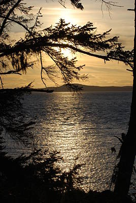 Photograph - Lopez Island Sunset by Gene Ritchhart