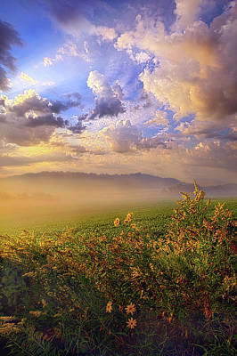 Photograph - Lord Hear Us by Phil Koch