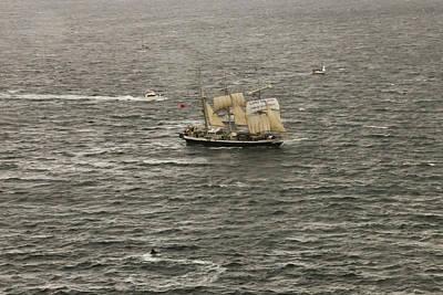 Photograph - Lord Nelson Enters Sydney Harbour by Miroslava Jurcik