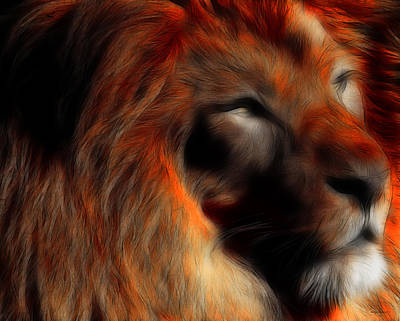 Lord Of The Jungle Art Print by Wingsdomain Art and Photography