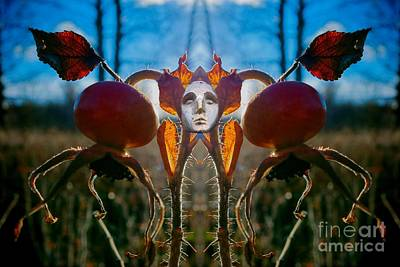 Helsinki Photograph - Lord Of The Rose Hips by Mikko Palonkorpi