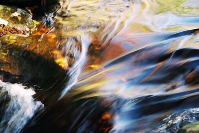 Black Rock Yellow Leaves Water Photograph - Lorelei by Joanne Baldaia - Printscapes