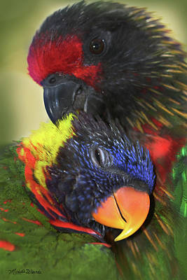 Photograph - Lorikeet Lovers by Michelle Wiarda-Constantine