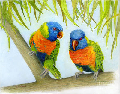 Lorikeet Pair Art Print