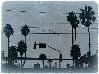Palm Trees Photograph - Los Angeles by Naxart Studio